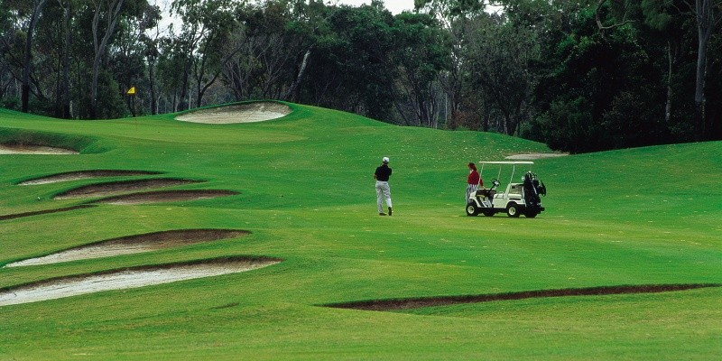 Golf Resorts, Gold Transport Minibus Noosa, Maroochydore Sunshine Coast. Coast to Hinterland Charters Sunshine Coast