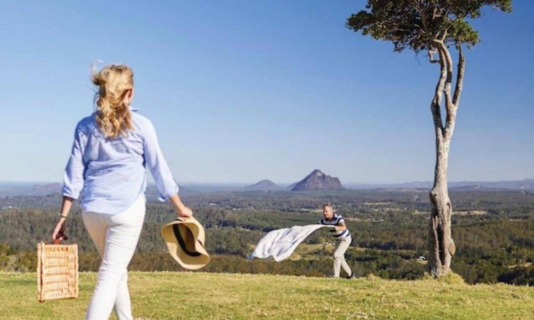 Travel Safe COVID Clean Minibus Charter. Coast to Hinterland Charters, Sunshine Coast